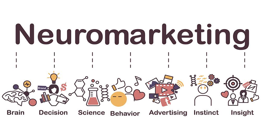 brand minds business dictionary neuromarketing2